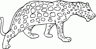Small Picture Cheetah Coloring Pages Free Coloring Pages Coloring Home