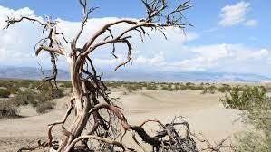 im Death Valley Nationalpark