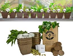 outdoor herb garden kit.  Kit Mr Sprout U0026 Co DIY Gardening Kit  Complete Medicinal And Culinary Herb  Garden For Outdoor I