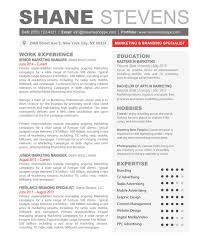 The Shane Resume Creative Template For Word Professional 2014 Thes