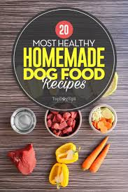 most healthy homemade dog food recipes