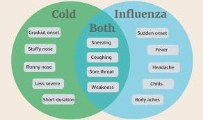 Flu Symptoms The Key Differences Between The Flu And Common
