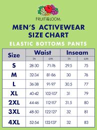 Champion Sweatpants Size Chart Rldm