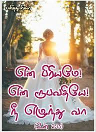 tamil verse bride songs of solomon love words es