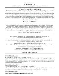 Resume For Dental Hygienist Delectable Dental Hygienist Resume Template Free Stepabout Free Resume