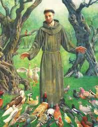 Bildresultat för Helgonet franciskus av assisi
