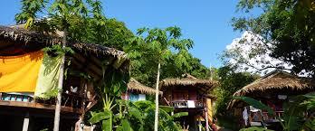 Restaurant On The Thong Reng Beach Koh Phangan Island Thailand Treehouse Koh Phangan