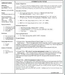 1 Page Resume Format