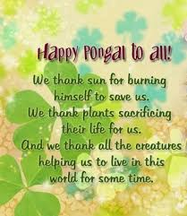 pongal festival essay in english