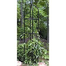 Best 25 Wire Trellis Ideas On Pinterest  Trellis On Fence Climbing Plant Trellis