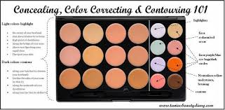 Color Correcting Chart Elf Prettiest Palettes For Color Correcting Favful