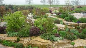 Ideas For Rockeries Landscaping Ideas For Rockery Landscaping