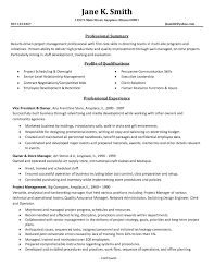Software Project Manager Resume Technical Computers Technology