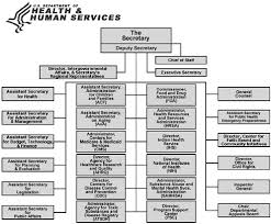 Images Of Health And Human Services Organizational Chart