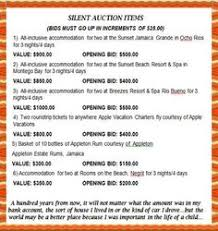 silent auction program template silent auctions this is an excellent way to get more bids on your