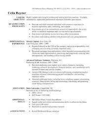Full Image for Software Skills Resume Sample Key Skills For Software Testing  Resume Good Software Skills ...