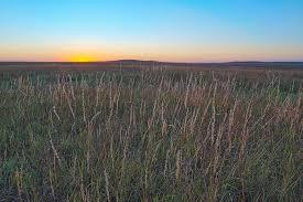 tall grass field sunset. Tall Grass Prairie Sunset\u003cbr /\u003e Preserve, Kansas. Field Sunset
