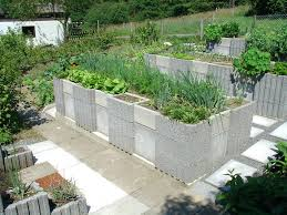 building a raised garden bed beds with concrete blocks recycled materials 1