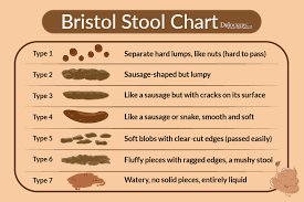 Stool Movement Chart 16 Ways To Achieve A Healthy Poop Drjockers Com