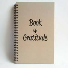 Image result for gratitude book