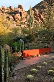 desert garden ideas. Exellent Desert Echinocactus Grusonii Golden Barrel Cactus  Inside Desert Garden Ideas