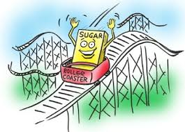 Diabetic Cats Like Me Sometimes Ride a Blood Sugar Roller Coaster