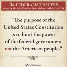 answer the question being asked about what was the purpose of the what was the purpose of the federalist qessays