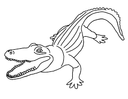 Small Picture Wonderful Alligator Coloring Pages 43 8190
