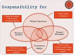 business analysis professional project services lcc share this