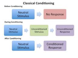 Example Of Classical Conditioning Learning Classical Conditioning Playlearnparent