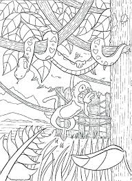 Printable Rainforest Animals Printable Animals Coloring Pages