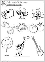 Food and Non Food Classifying Worksheet 2 further  further  moreover Classification Worksheets   Have Fun Teaching additionally Kindergarten Worksheets   KinderIQ furthermore Transportation Classifying Worksheet 3 likewise Classifying Animals Worksheet   Mammals  Fish  or Birds besides Best 25  Kindergarten sorting activities ideas on Pinterest together with Sorting Worksheets and Classifying Worksheets   School Sparks additionally Picture Analogies – 1 Worksheet   FREE Printable Worksheets additionally 23 best Sorting Classification  Math  images on Pinterest. on kindergarten clification worksheet