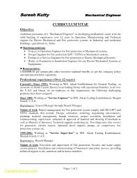 Elegant Resume Template Mechanical Engineer Best Templates