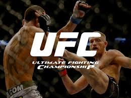 Resultado de imagem para UFC - ULTIMATE FIGHTING CHAMPIONSHIP