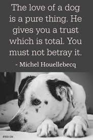 Dog Quotes Loving Words 3 Dogs Dog Quotes Pet Dogs