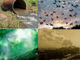 Курсовая работа Статистический анализ и показатели состояния  Статистический анализ и показатели состояния охраны окружающей среды