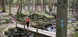 Image result for natchaug state forest