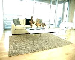 sisal rug reviews vs jute large size of coffee chenille stair pottery barn rugs color bound