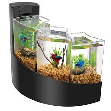 Cool Aquariums For Sale Fish Tank Cool Fish For Small Tanks Sale Aquarium Smaller Best