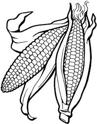 Pictures Vegetables Corn Is Good For