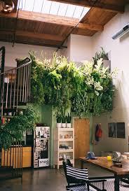 4 Indoor Balcony Garden