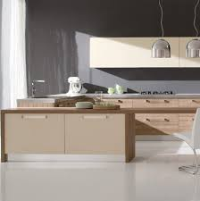 Ready Kitchen Cabinets India Kitchen Readymade Kitchen Cabinets Ready Made Kitchen Cabinets