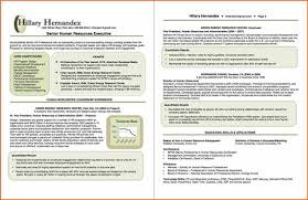 8 Resume Of Hr Executive Template Budget Template Letter