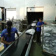 ปลาทู (อินโด) ถุงใสน้ำหนักชั่ง - A Grade... - บริษัท ไทย ซี อินเตอร์เทรด  จำกัด