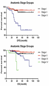 Ajcc Breast Cancer Staging 8th Edition Chart The Prognostic Value Of The 8th Edition Of The American
