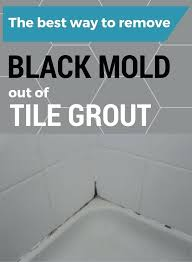 how to kill bathroom mold. What Kills Bathroom Mold The Best Way To Remove Black Out Of Tile Grout Kill . How