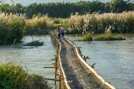 「竹橋」的圖片搜尋結果