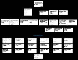 Ford Corporate Structure Chart Provost And Executive Vice President For Academic Affairs