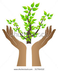 save trees hands