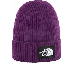 <b>Шапка The North Face</b> Logo Box Cuf Bne купить в интернет ...